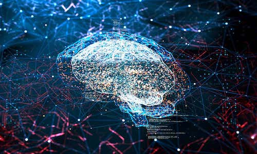 An image of a digital brain.